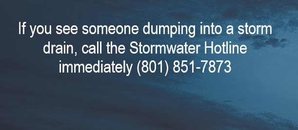 Stormwater Hotline